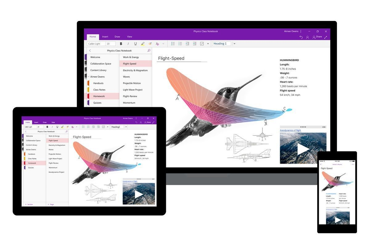 microsoft onenote note-taking app